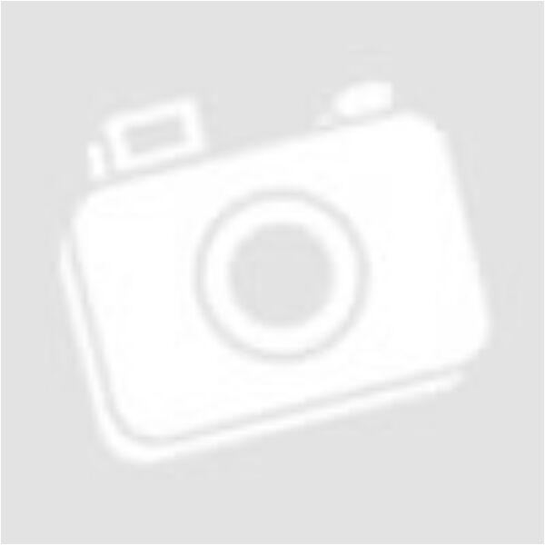 Karácsonyi LED fénykábel 5m kék színben